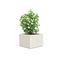 fioriera in marmo / in pietra naturale / quadrata / moderna