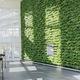 parete vegetale stabilizzata / di piante viventi / in pannelli modulari / naturale