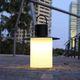 lampada da tavolo / in ferro / in polietilene rotostampato / moderna