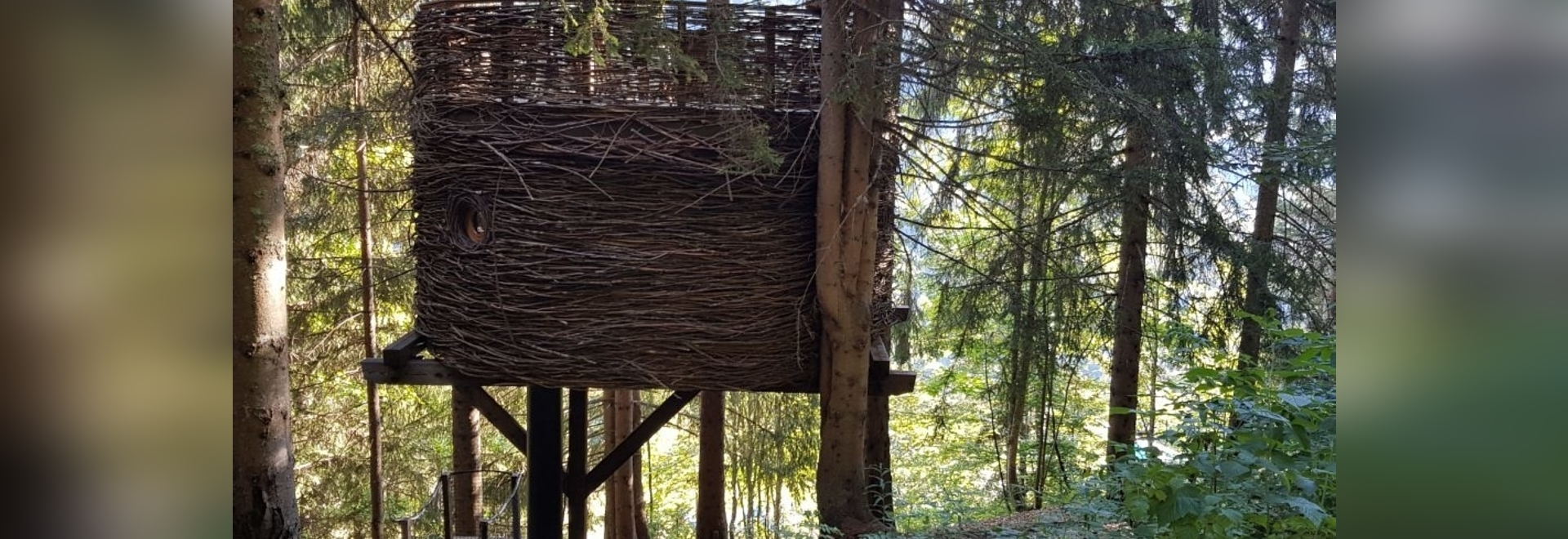 Il Nido, una delle lussuose case sull'albero di Nicolas Boisrame, fondatore di Entre Terre et Ciel.
