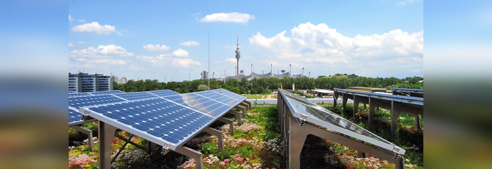 La vegetazione del tetto garantisce una temperatura ambiente più fresca e, di conseguenza, una maggiore resa dell'impianto fotovoltaico.