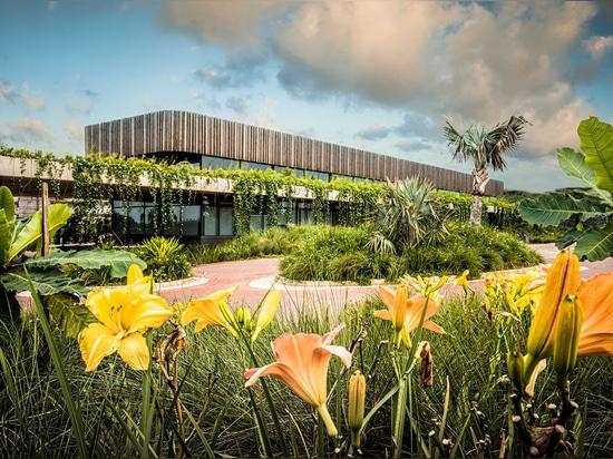 Gli architetti del blocco completano l'edificio per uffici a bassa altezza con elementi grezzi in Sudafrica