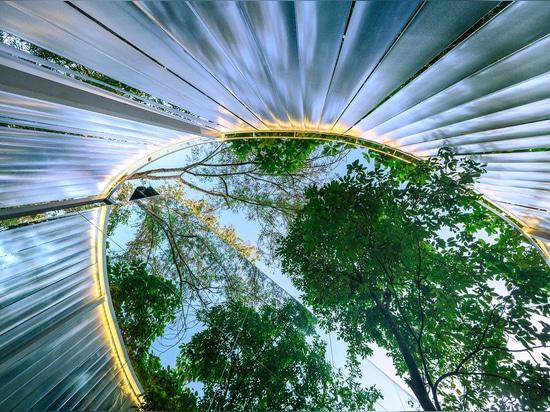 Sher Maker crea un caffè da 6 metri di muro opaco in una foresta in Thailandia