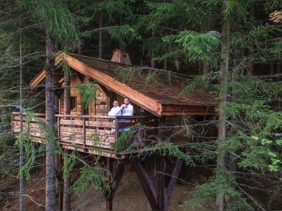 Cabane Mont-Blanc (la più tradizionale casa sull'albero).