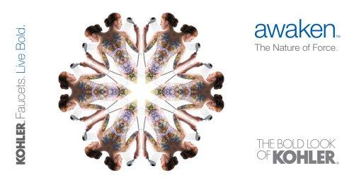 Awaken Launch Brochure