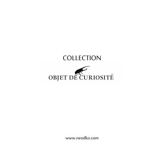Collection Objet de Curiosité