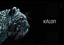 CATALOG KALON