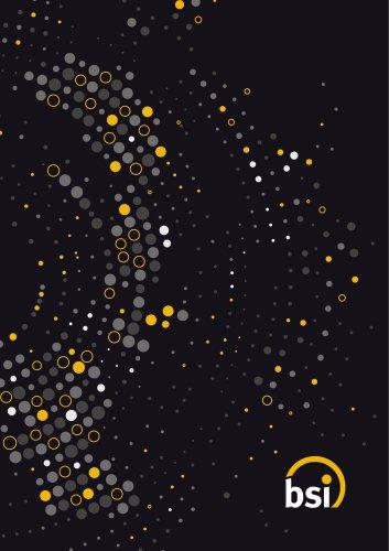 2019 Bsi Lighting Catalogue