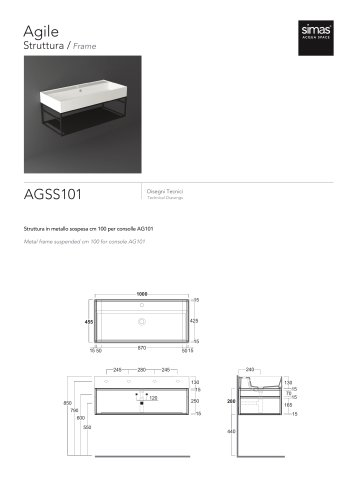AGSS101