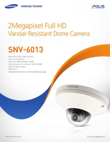 SNV-6013