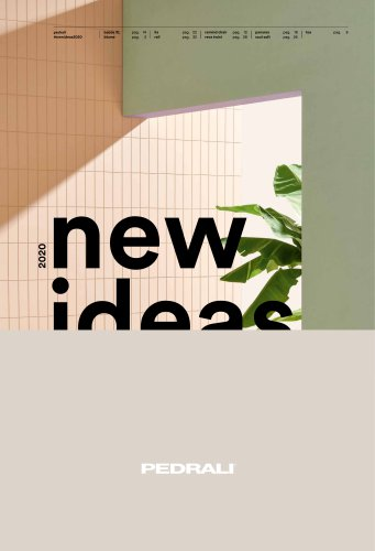 New Ideas 2020