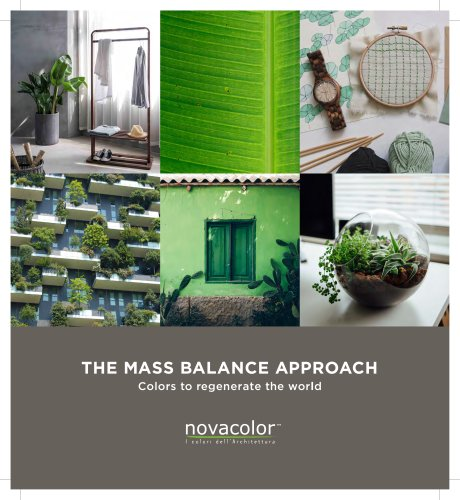 The MASS Balance Approach