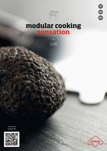 modular cooking sensation - 1100