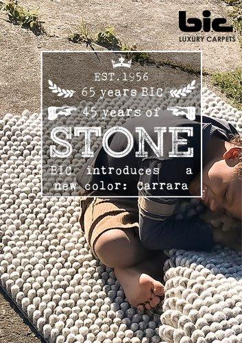 BIC Stone