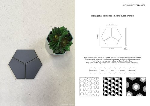 Product sheet-Hexagonal Tomettes-in-3-modules shifted-Normandy Ceramics