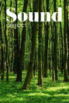 Sound Catalog