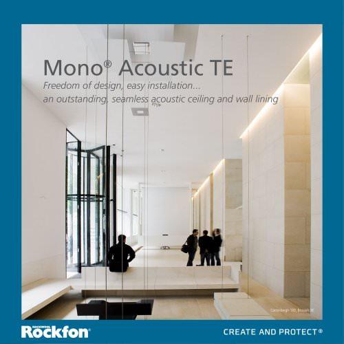 Mono Acoustic TE