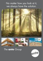 The ante -Group